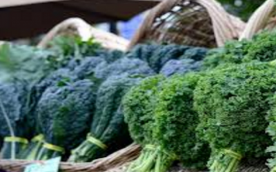 10 Amazing Reasons to Add Kale to your Daily Diet